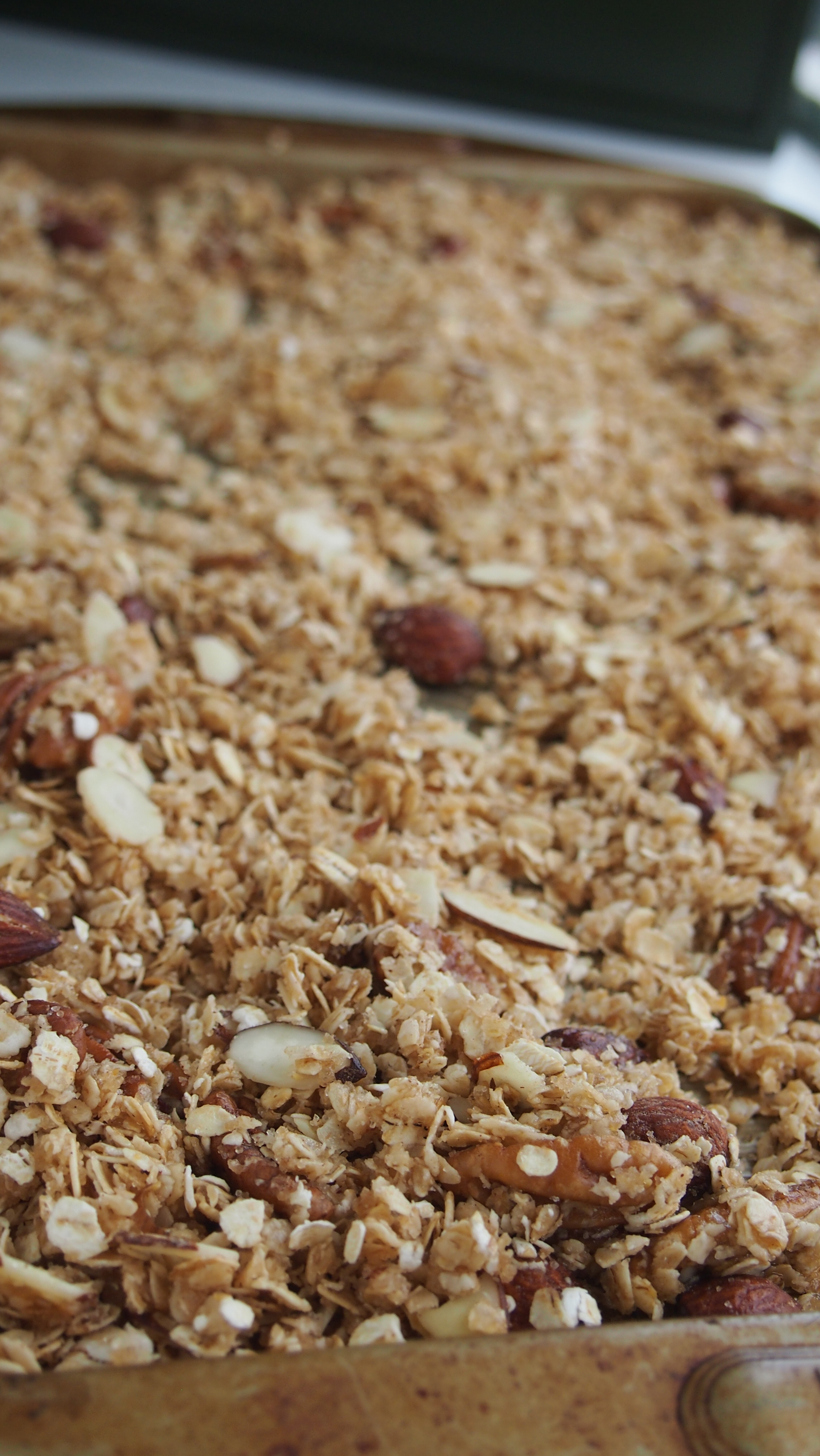 Easy Homemade Granola Recipe - Cha-Ching on a Shoestring™