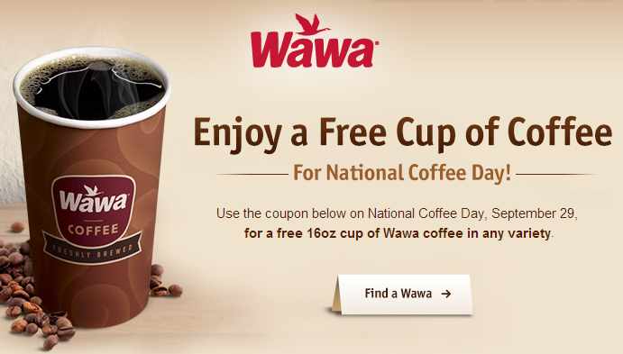 picture regarding Wawa Coupons Printable referred to as Wawa discount coupons printable - Minastrin 24 fe coupon card