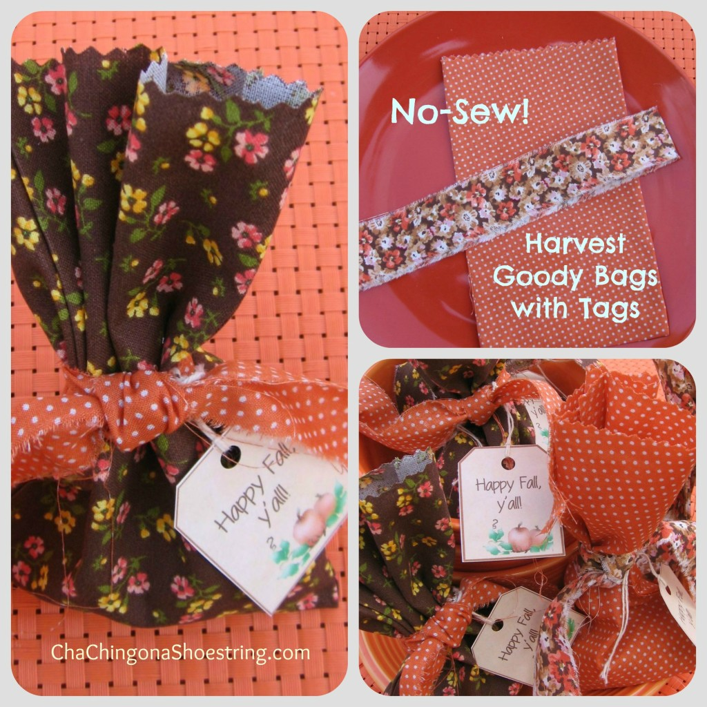 Pic Harvest Goody Bag Collage